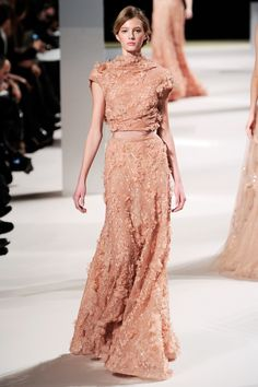 Elie Saab Haute Couture Spring/Summer 2011  This is what Berenice Bejo should have worn to the Oscars!