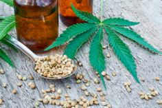 Cannabidiol (CBD) is an active ingredient in cannabis derived from the hemp plant. It may help treat conditions like pain, insomnia, and anxiety. Harvard Health, Endocannabinoid System, Medical Cannabis, Hemp Oil, Natural Remedies, Holistic Remedies, The Help, Wellness