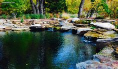 Large Load of Geology Natural Swimming Pool/Pond