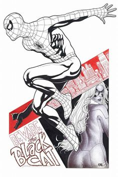 Spider-Man and Black Cat by Frank Cho *