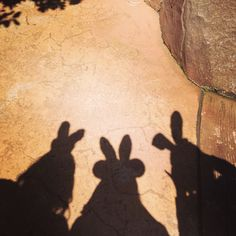 Easter Disneyland