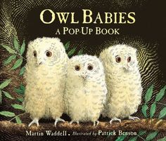 Owl Babies by Martin Waddell, Patrick Benson is another book on the Cocoons/Caterpillar (ages 2-3) reading list this summer. It's a story about three baby owls — Sarah, Percy and Bill. #preschoolbookclub #mandalasj #owlbabies