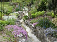 Le ruisseau structure le jardin et permet l'installation de vivaces sur les murets, (c) JC Moiron, SNHF. Jean-Claude Moiron, lauréat du concours Jardiner Autrement 2011