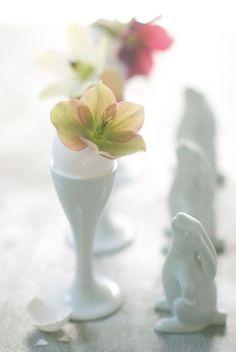 white china & helleborus