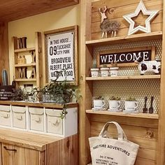 rararaさんの、My Shelf,ダイソー,植物,雑貨,DIY,ニトリ,セリア,salut!,3Coinsについての部屋写真