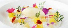 A five-star fine dining vegan experience at Qunu Restaurant | Hello JHB