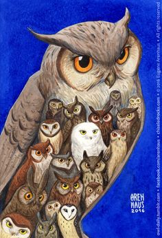 Owl Daily by Eugene Arenhaus — №500: Owlful owl. Five hundred owls!!!...