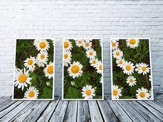 Camomiles on green meadow.  Code: P000015 Phone: +628118439998 (WA/SMS) Email: sales@canvasdeco.com Website: www.canvasdeco.com Price: IDR 799.000 . #canvasprinting #canvaspainting #cetakkanvas #cetakkanvas #cetakkanvasjakarta #cetakkanvasphoto #cetakkanvasmurah #lukisan #kanvasprint #canvascustom #hiasandinding #dekorasidinding #walldeco #spanram  #canvasframe#kanvas #canvasposter #printcanvas #walldecoration #vintageposter #canvaspaintings #posterkanvas #printkanvasmurah #walldecor…