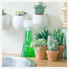 ecologische schoonmaakproducten