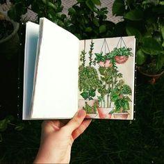 Watercolor -plants - by: Brenda Rodrigues