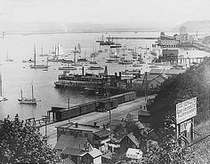 what does a backyard in 19 century seattle look like? - Google Search