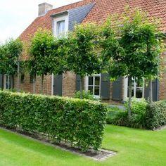 Jardin rural à Hoeven - Innen Garten - FR Home Landscaping, Front Yard Landscaping, Garden Cottage, Home And Garden, Espalier, Garden Deco, Garden Seating, Garden Trellis, Garden Paths