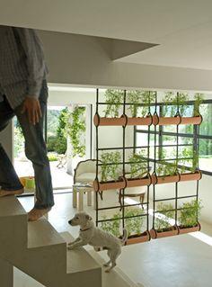 Hanging, vertical garden
