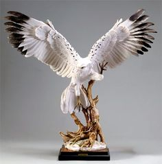 "Florence Sculpture ""Hawk"" 0457/S H cm 52 = 20½"""