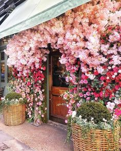 Gorgeous storefront with flowers in full bloom!