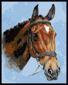 Horse cross stitch kit or pattern