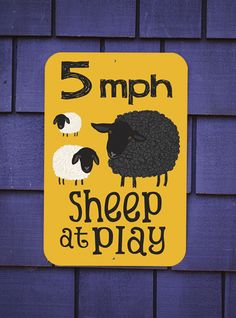 Slow down! Sheep at Play!