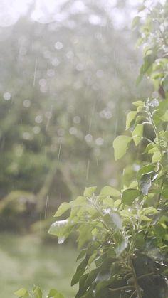 Rain Images Beautiful, Beautiful Photos Of Nature, Amazing Nature, Aesthetic Movies, Sky Aesthetic, Aesthetic Pictures, Aesthetic Videos, Aesthetic Photography Nature, Rain Photography