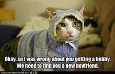 Knitting project gone wrong. ..