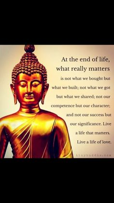 Pin by Nancy Lake on BUDDHA AND FRIENDS | Budismo frases