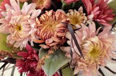 Love 'n Fresh Flowers Heirloom Mums - Ten Favorite Mum Varieties for Cutting