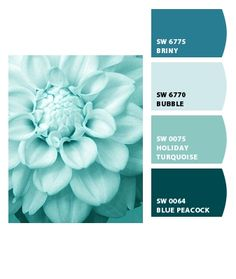 Trendy Ideas For Kitchen Paint Colors Teal Bathroom Teal Bathroom Paint, Small Bathroom Colors, Bathroom Color Schemes, Paint Schemes, Colour Schemes, Colour Palettes, Kitchen Colors, Small Bathrooms, Turquoise Bathroom