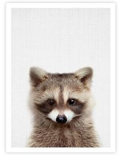 THE PRINTThis delightful peekaboo raccoon is the perfect addition to any nursery. The background of the image has a subtle fabric like texture which adds to the warm inviting tone of the artwork. This premium quality giclée art print h...