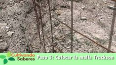 Cultivando Saberes #6 - Tanque Zamorano