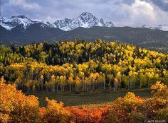Autumn in the Sneffels - Mount Sneffels Wilderness Area, Colorado \ Jack Brauer Mountain Photography