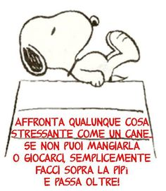 Affronta qualunque cosa stressante come un cane. Smile Quotes, Funny Quotes, Chillout Zone, Very Inspirational Quotes, Funny Blogs, Important Quotes, Feelings Words, More Than Words, My Mood