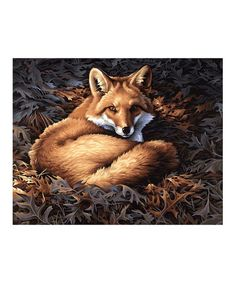 Sunlit Fox Paint by Numbers Kit by PaintWorks, $15 !!  #zulilyfinds