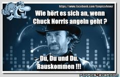 Funpics4ever Picdump #45 - die Homepage der lustigen Bilder Chuck Norris Facts, Steven Seagal, Everything Funny, Picture Design, Infographics, Vip, Haha, Funny Pictures, Funny Quotes