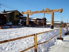 The end of the Iditarod race