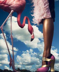 In The Pink | Mélodie Monrose | Harper's Bazaar | November 2013
