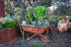 This rusted wheelbarrow holds an interesting world of succulents and other plants in its basin. You can get as creative as you'd like when it comes to utilizing an old wheelbarrow into a planter. Create custom mini landscapes or themes by choosing the appropriate plants and colors for an interesting outdoor focal point. What's even better is that you won't have to spend money on an expensive planter!