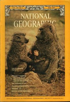 National Geographic May 1975 National Geographic Cover, Nazca Lines, 21st Century Fox, Science Articles, Baboon, Amnesia, World Cultures, Washington Dc, Magazine Covers