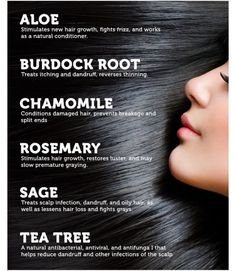 Herbal hair remedies - TRY these NATURAL remedies for healthy hair! Salud Natural, Pelo Natural, Natural Hair Tips, Natural Hair Styles, New Hair Growth, Hair Growth Tips, Hair Care Tips, Hair Remedies, Herbal Remedies