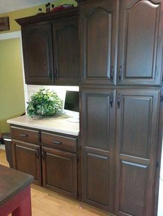 I really like this color. Wonder if it would look good on my cabinets. General Finishes Antique Walnut Gel Stain was the color of choice for Lisa Sloan to give her kitchen cabinets a fresh new look. Stained Kitchen Cabinets, Best Kitchen Cabinets, Kitchen Cabinet Hardware, Kitchen Redo, Kitchen Remodel, Kitchen Tips, Cheap Kitchen, Kitchen Ideas, Island Kitchen