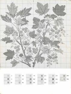 Gallery.ru / Фото #96 - Книга с яблоневой веткой на обложке - Mosca