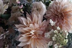 Ode to the Dahlia - Sept 14, 2013 — Little Flower School