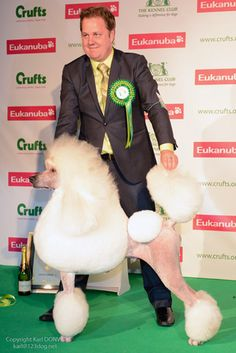 Fancy That: Friday at Crufts    By Christi McDonald