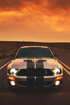 ShelbyFireSeason (by Lunchbox PhotoWorks) ( Full Throttle Auto Maserati, Bugatti, Lamborghini, Ford Mustang Shelby, Mustang Cars, Shelby Gt 500, Mustang Wallpaper, Drifting Cars, Latest Cars