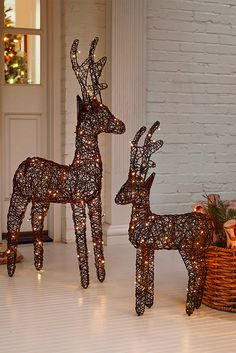 Bring a bit of that holiday magic to your outdoor decor with Pier 1's hand-woven LED reindeer. With eight different light functions in a warm, white hue, our glowing friends have almost as much charm and wonder as Santa's famous flying pals.