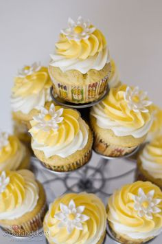 Creamy lemon cupcakes. Like the idea of layering two different colors of frosting.