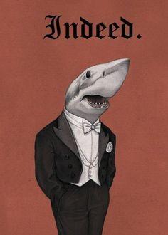 Funny. Indeed shark.
