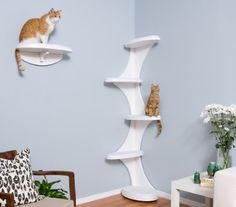 Contemporary cat furniture - Cat Tower and Shelf Cat Furniture, Furniture Decor, Cat Climbing Tree, Climbing Wall, Diy Cat Tree, Cat Perch, Wood Cat, Cat Towers, Cat Shelves