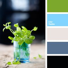 Cold verified spectral gamma of close shades of blue and natural green. This scheme is suitable for decorating of large sunny living room, dining room or kitchen; this color combination will be widely used in women's summer business wardrobe.