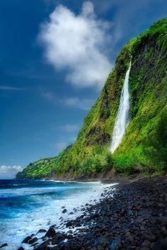 An absolute must-see to visitors of the Big Island. Waipio Valley - Kaluahine Falls, Hamakua coast on the Big Island, Hawaii Hawaii Vacation, Hawaii Travel, Vacation Spots, Hawaii Usa, Maui Hawaii, Hawaii Life, Usa Travel, Italy Travel, Big Island Hawaii