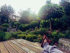 """Polubienia: 377, komentarze: 17 – Dominik Strzelec. (@dominikstrzelec) na Instagramie: """"To lubię, luz i spokój😉 . . #mygarden #garden #easy #me #myworld #chill #friday #time #relax…"""""""
