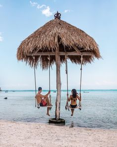 Beach swings at The Sand beach bar and restaurant in Nusa Ceningan Beach Hotels, Beach Resorts, Bar Piscina, Khao Lak Beach, Beach Swing, Lamai Beach, Beach Cafe, Outdoor Restaurant, Tiki Hut